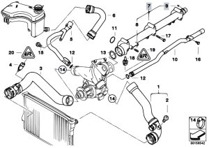 Original Parts for E46 M3 S54 Coupe  Engine Cooling System Water Hoses  eStoreCentral