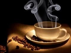 El kaweh - El café