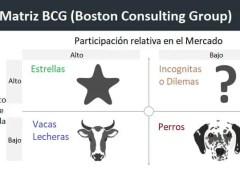 Matriz BCG - Análisis de la cartera de productos