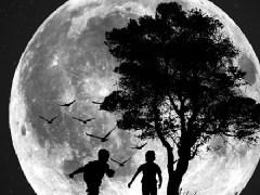 lua-conjunta-criança