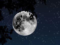 lua-conjunta-estrela