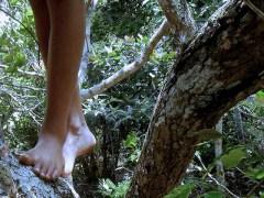 árvore-conjunção-criança-lenormand