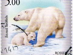 urso-conjunção-carta-lenormand