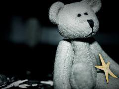 urso-conjunção-estela-lenormand