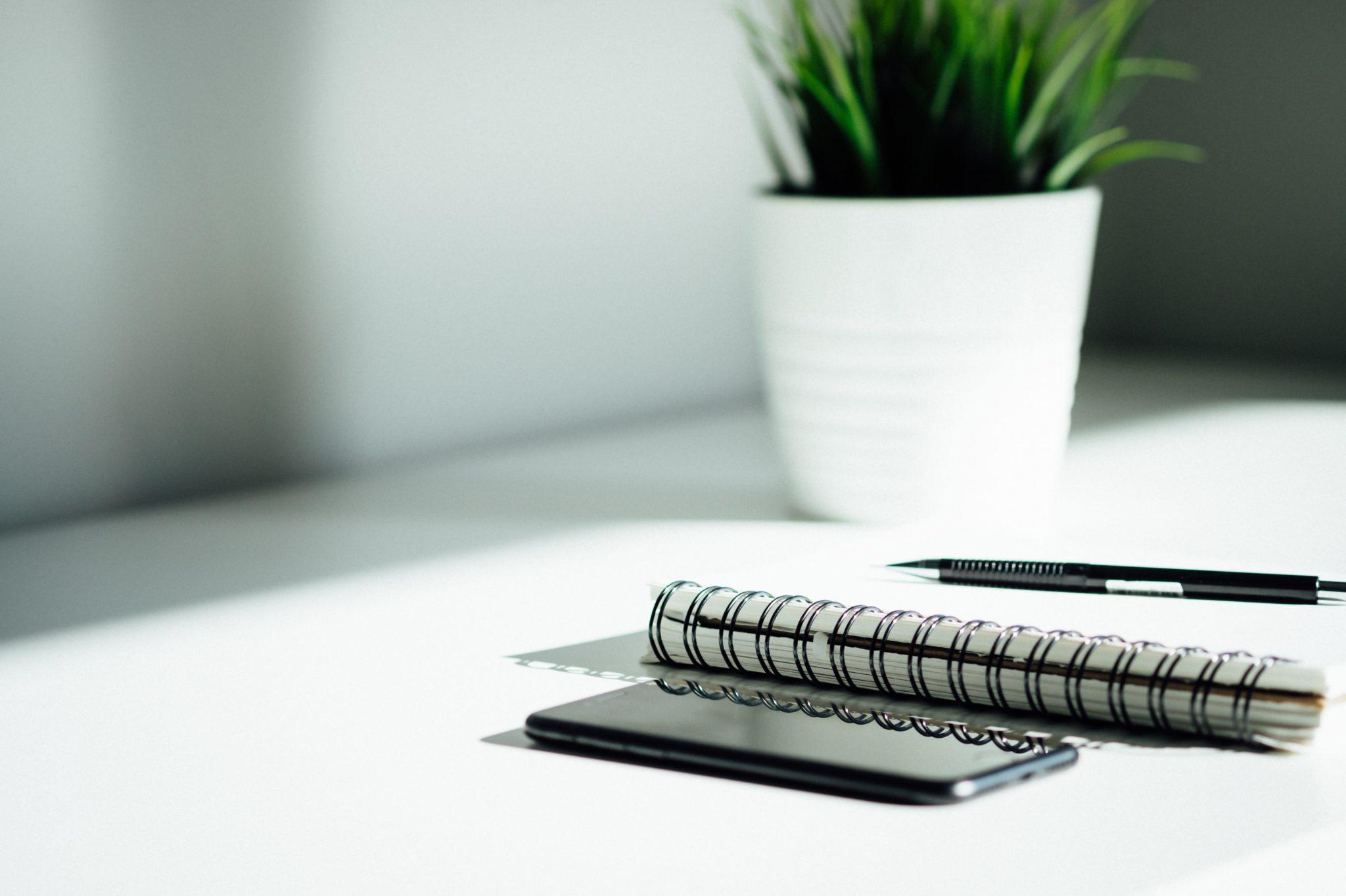 ¿Puede un negocio progresar sin página web?