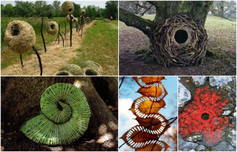 Andy Goldsworthy, artista y fotógrafo inglés, utiliza lo que encuentra en la naturaleza para realizar sus obras de arte, me encantan las hojas o el nido hecho de palitos.