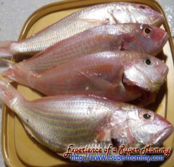 Bisugo fish (threadfin bream)