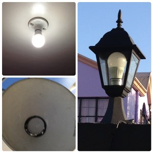 Which is More Energy Efficient LED lights or CFL?