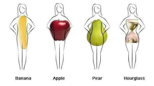 women-body-shapes