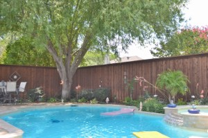 Why You Should Heavily Consider Installing a Pool Fence