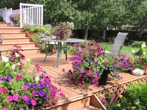 The Best Options for Your Outdoor Living Space