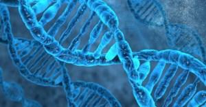 ensayo de terapia celular HRPC para Retinosis Pigmentaria