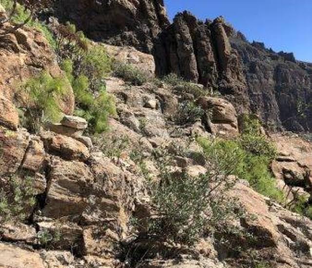 Alpiner Fernwanderweg Gran Canaria