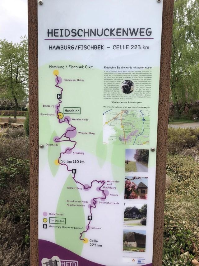 Heideflächen Heidschnuckenweg