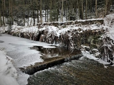 Kalter Harz