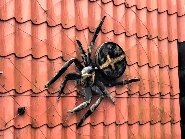 Spinne auf dem Hexenstieg