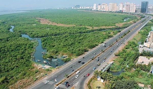Palm Beach Road, Navi Mumbai