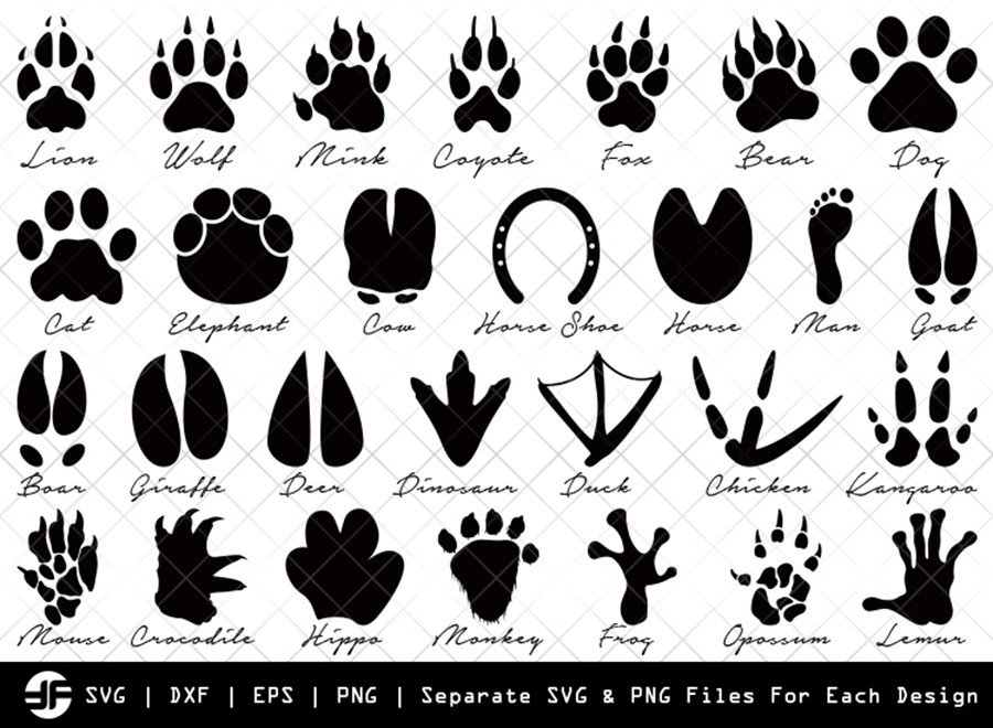 Animal Paw SVG | Animal SVG | Silhouette Bundle | Cut File
