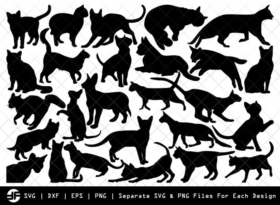 Cat SVG | Animal SVG | Silhouette Bundle | Cut File