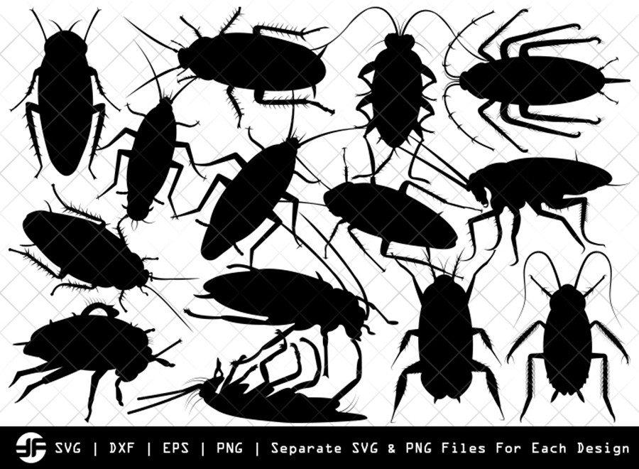 Cockroach SVG | Animal SVG | Silhouette Bundle | Cut File