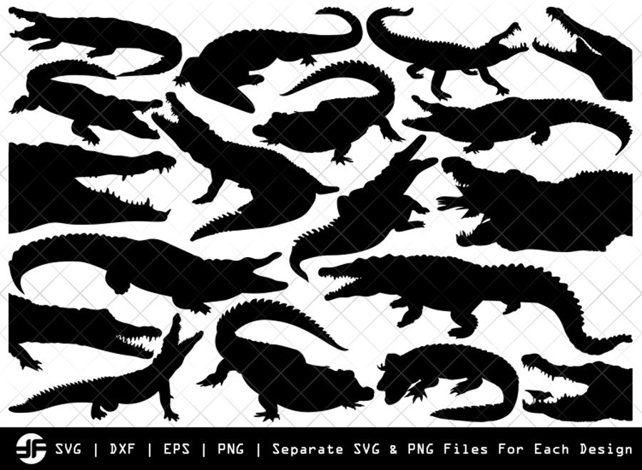 Crocodile SVG | Animal SVG | Silhouette Bundle | Cut File