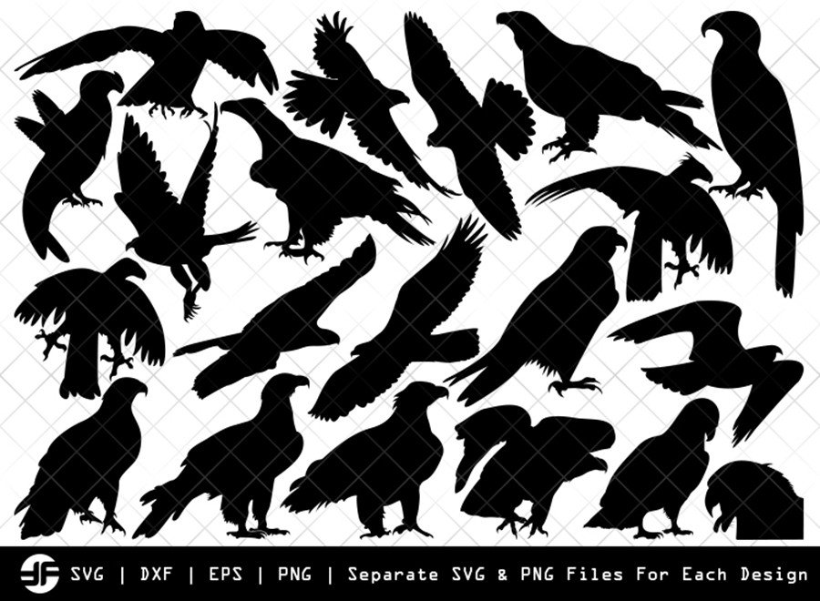 Eagle SVG | Eagle Silhouette | Bird Bundle | SVG Cut File
