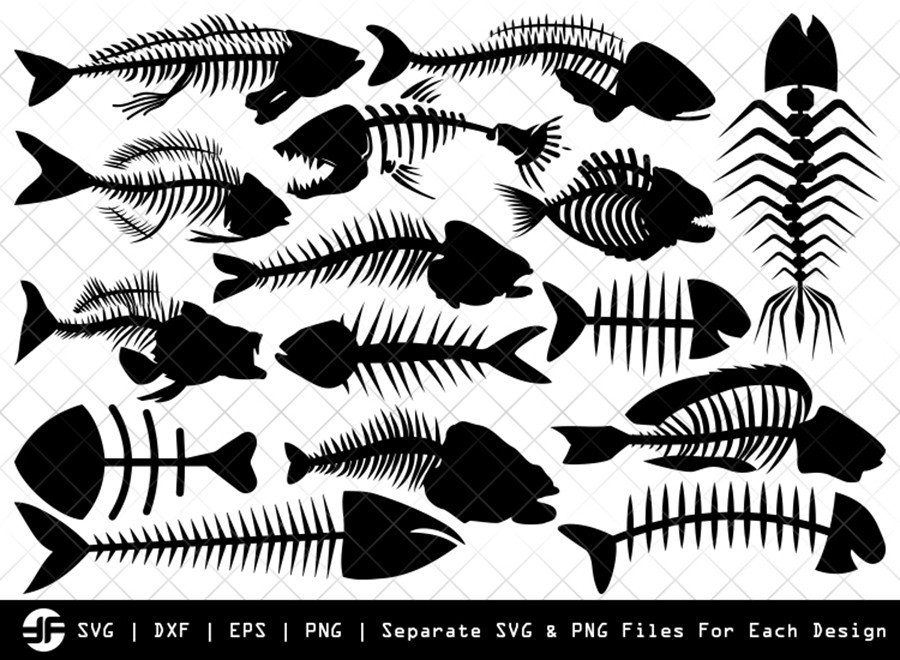 Fish Bone SVG | Fish SVG | Silhouette Bundle | SVG Cut File