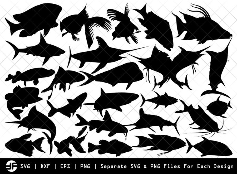Fishing SVG | Sea Fish SVG | Silhouette Bundle | Cut File