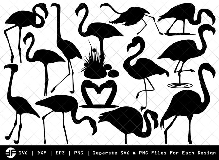 Flamingo SVG Cut File | Flamingle Bird Silhouette Bundle