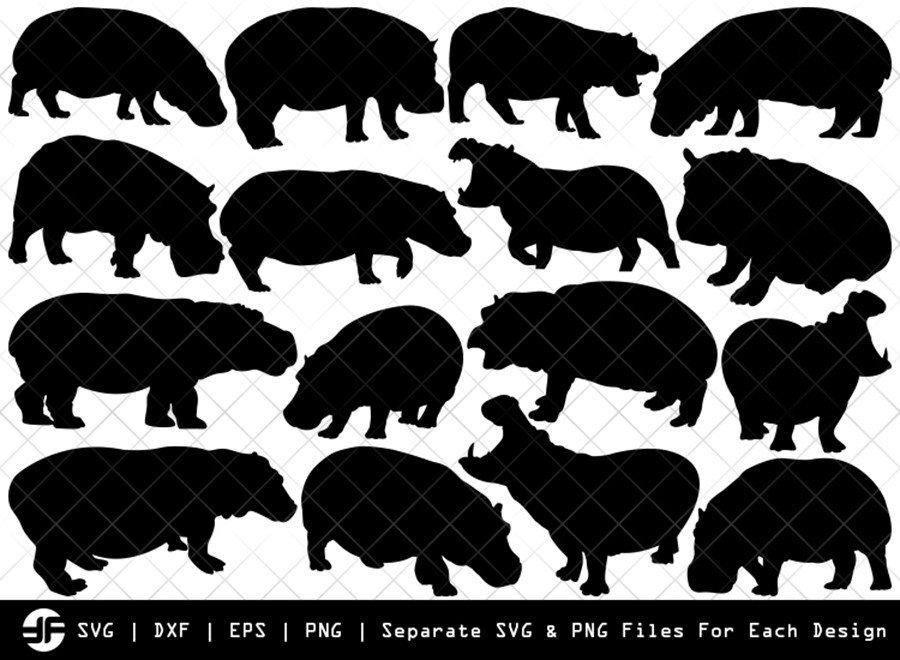Hippo SVG   Animal SVG   Silhouette Bundle   SVG Cut File