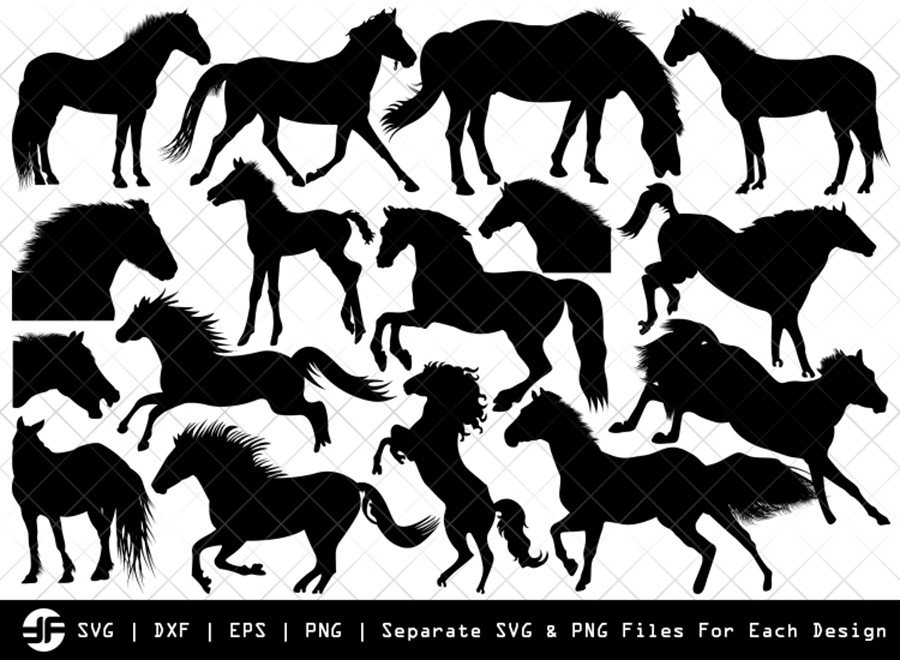 Horse SVG | Animal SVG | Silhouette Bundle | SVG Cut File