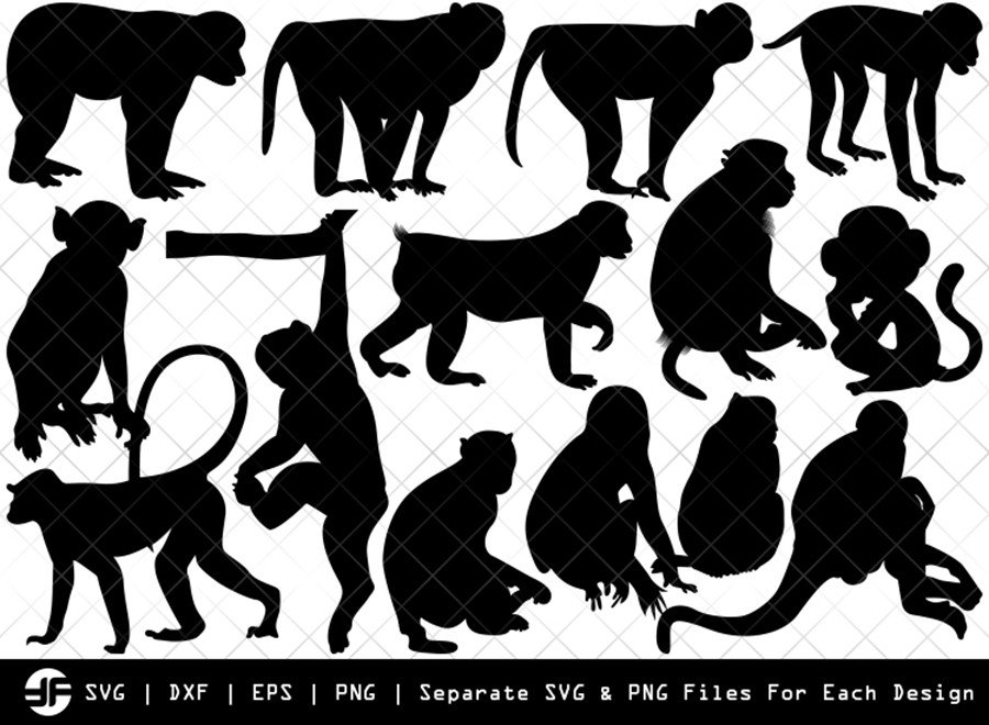 Monkey SVG | Animal SVG | Silhouette Bundle | SVG Cut File