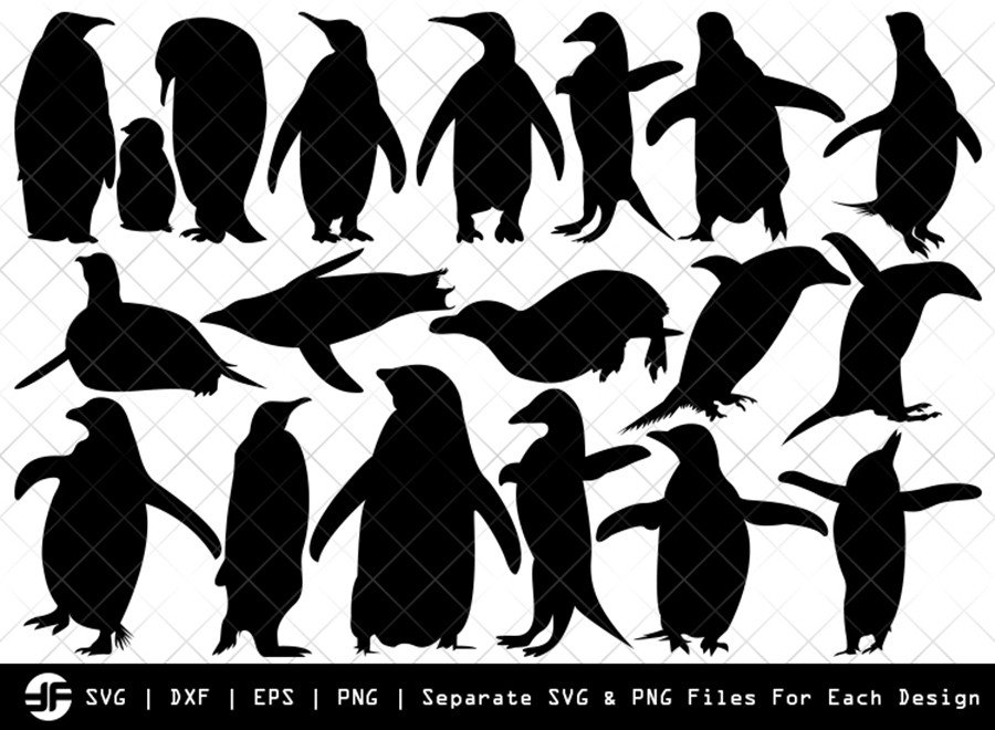 Penguin SVG | Animal SVG | Silhouette Bundle | SVG Cut File