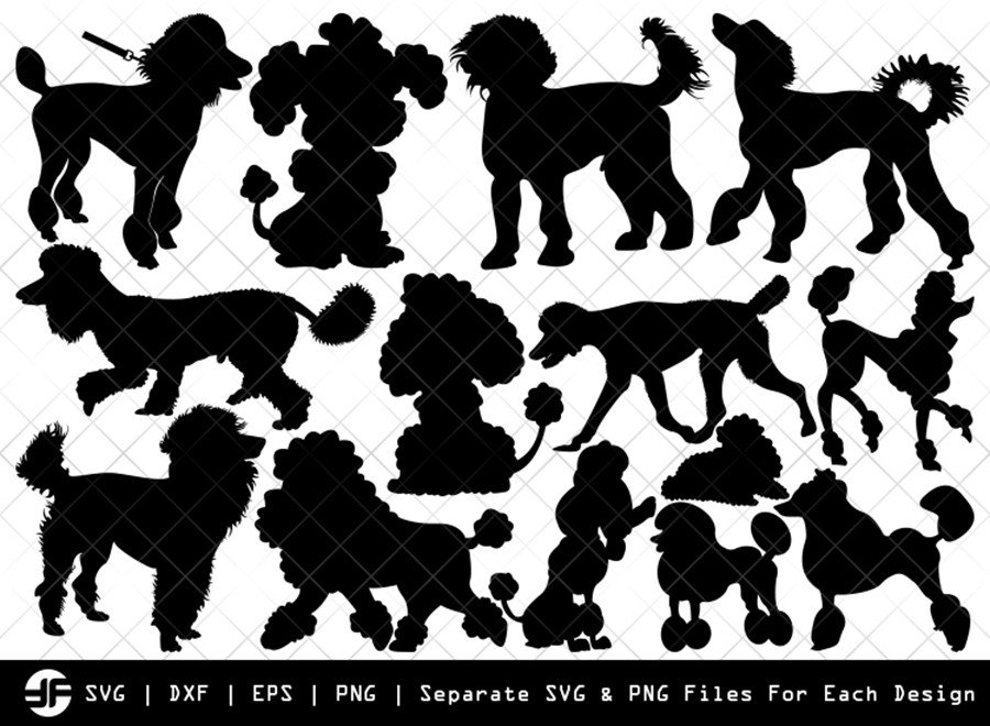 Poodle SVG | Animal SVG | Silhouette Bundle | SVG Cut File