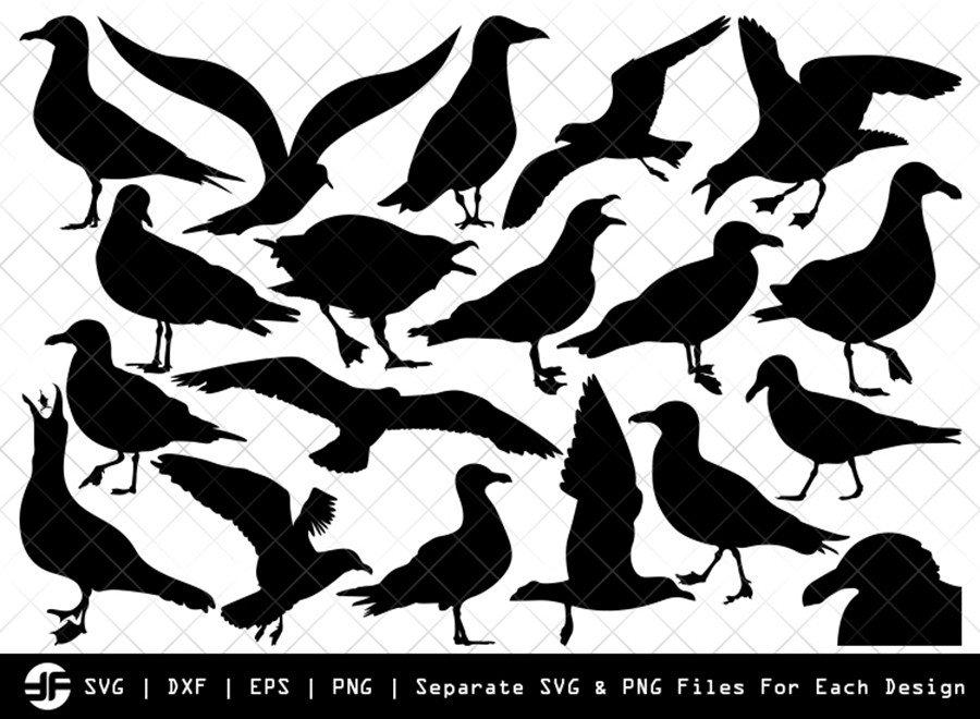 Seagull SVG | Bird Silhouette Bundle | SVG Cut File