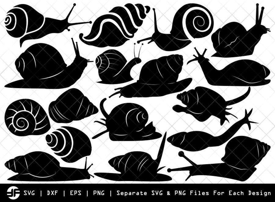 Snail SVG | Sea Snail SVG | Silhouette Bundle | SVG Cut File