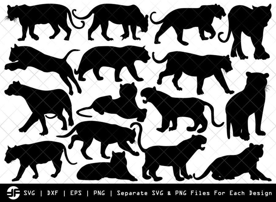 Tiger SVG | Animal SVG | Silhouette Bundle | SVG Cut File