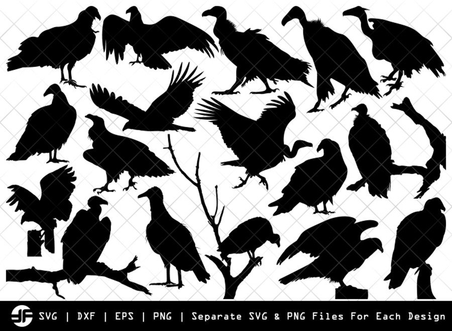 Vulture SVG | Bird Silhouette Bundle | SVG Cut File