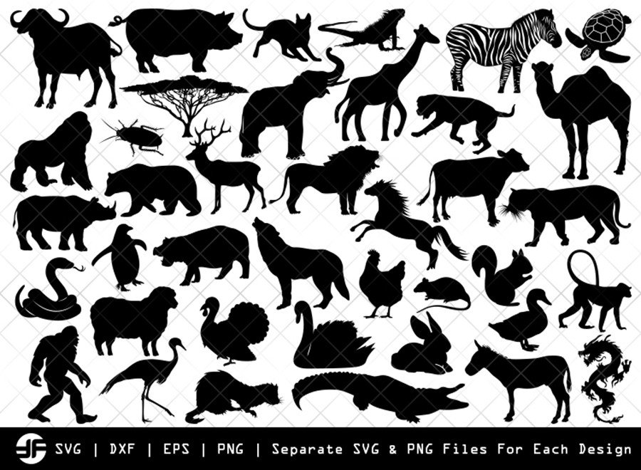 Zoo Animals SVG | Zoo SVG | Silhouette Bundle | Cut File