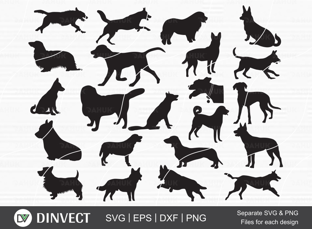 Labrador Dog SVG, Silhouette Designs