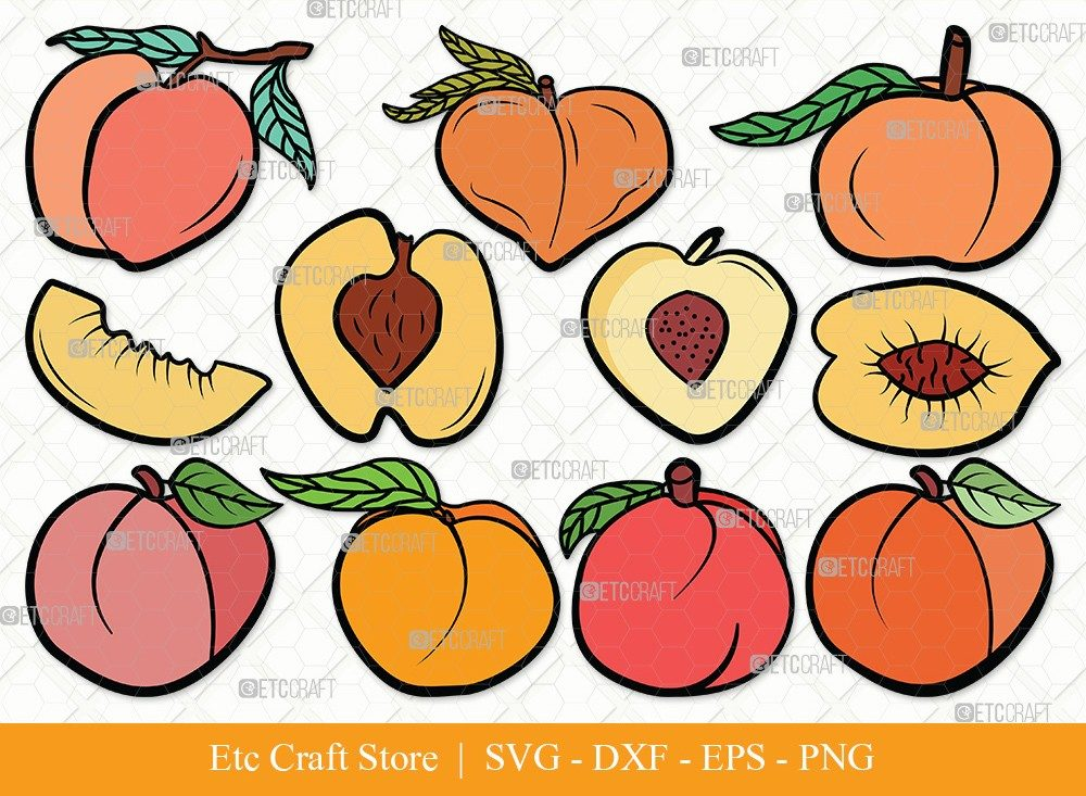 Peach Fruit Clipart SVG Cut File