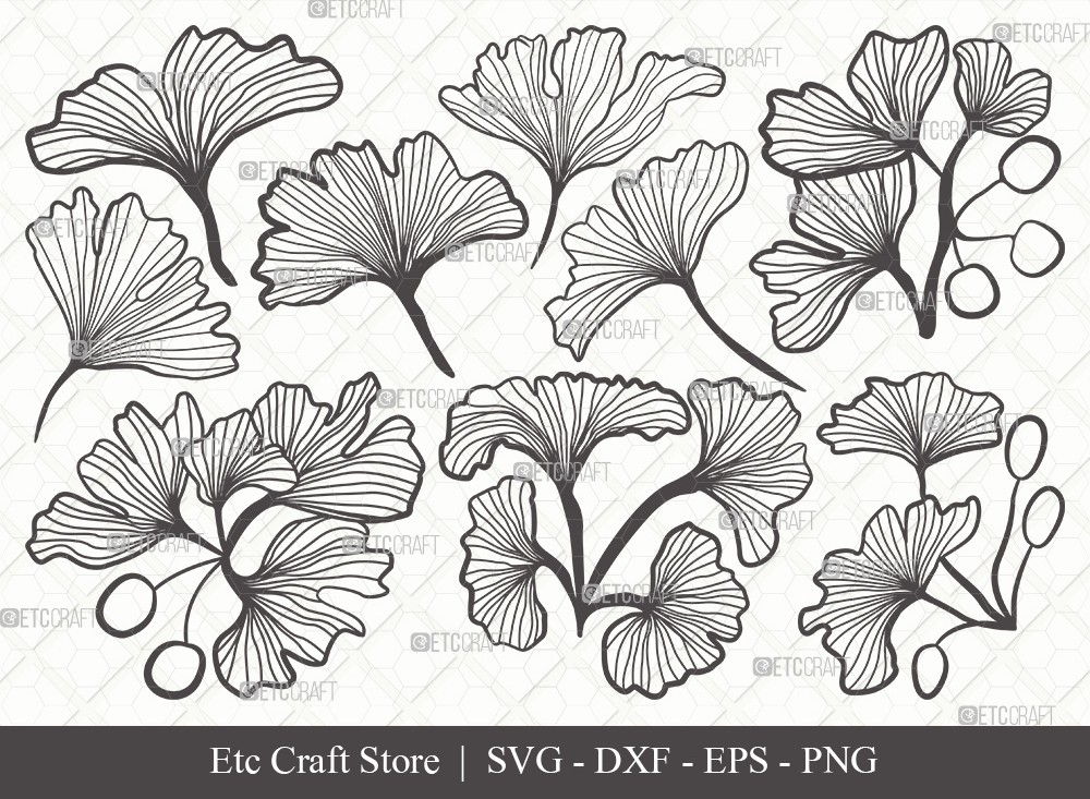 Ginkgo Leaves Outline SVG | Ginko Biloba Svg