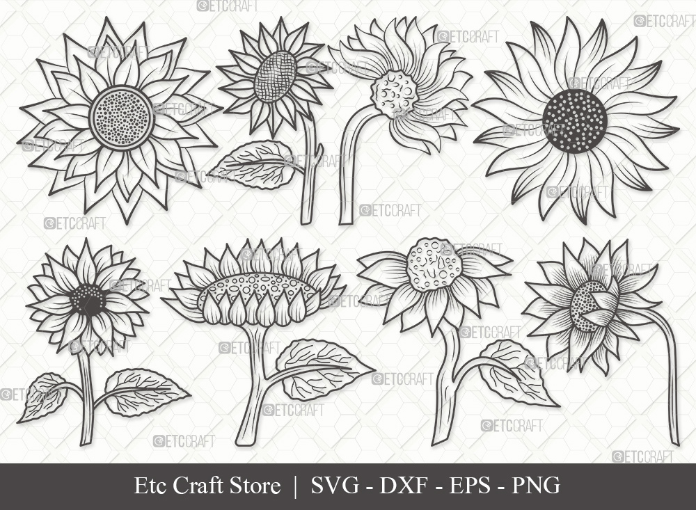 Sunflower Outline SVG | Sunflower SVG Bundle