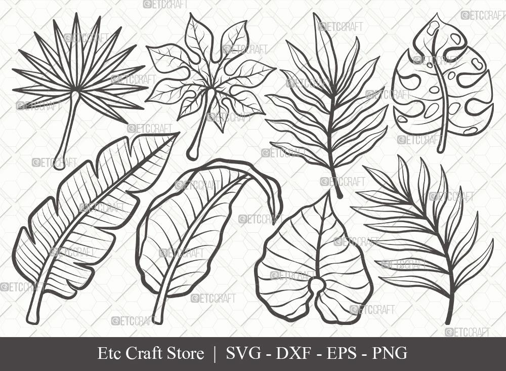 Tropical Leaf Outline SVG | Monstera Leaf Bundle