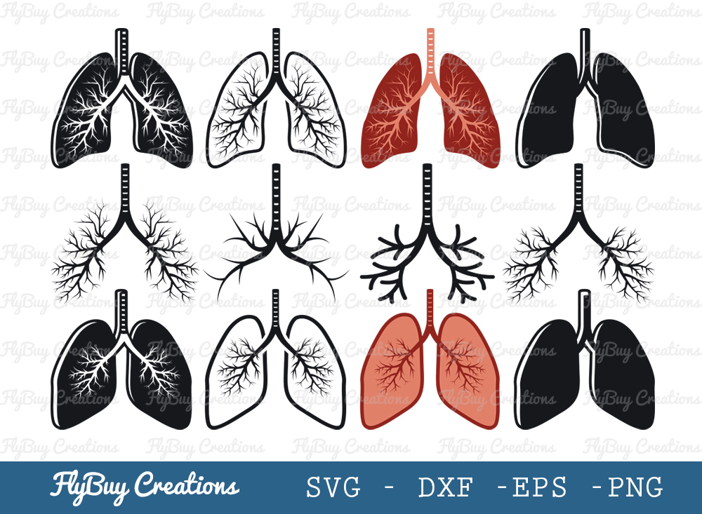 Human Lung SVG | Lungs Flowery SVG Bundle