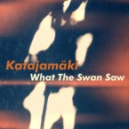 What The Swan Saw