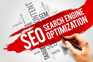 SEO Services and website design difference