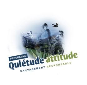 quiétude attitude
