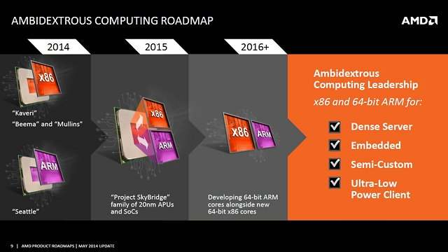 AMD_ARM_Core_Roadmap