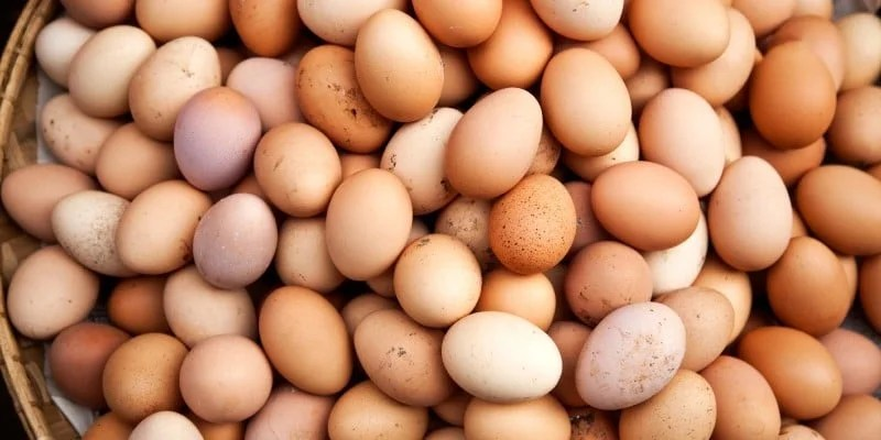 eggs-promo